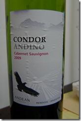 condor andino2